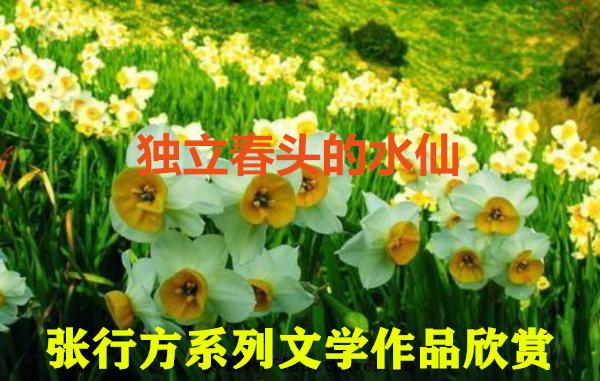 image/20200225/e8ab6cb021d5aa6e5a8bb634b6e54739.png