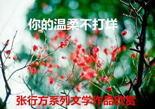 image/20200305/3ae88d42659fb9b0c1fbcc23deabfe1d.jpeg