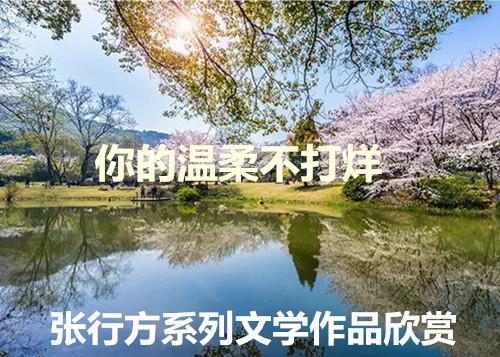 image/20200305/a351864f8887601863b8d14536cd0080.jpeg