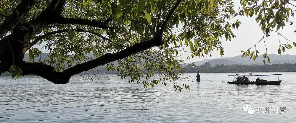 阿春游西湖系列7:三潭印月