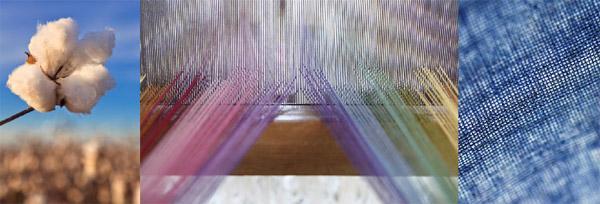 新疆优质棉报价坚挺 品牌意识逐步增强