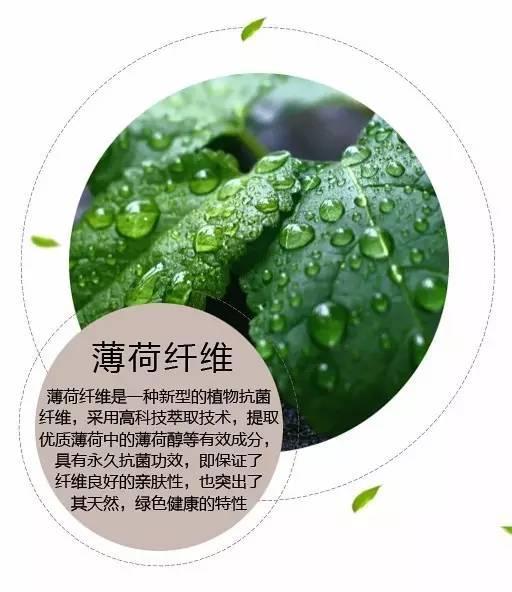 """拉比丨薄荷小衣,清爽一""""夏""""!"""